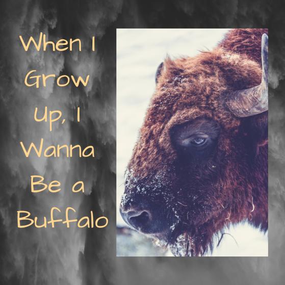 When I Grow Up, I Wanna Be a Buffalo